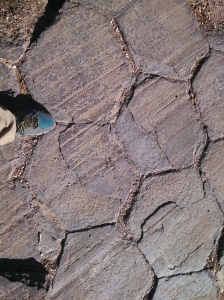 Close-up of the hexagonal rocks...neat